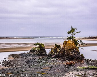 Oregon Coast, Landscape Photography, Nature Photography, Fine Art Photography, Wall Art, Home Decor, Gift