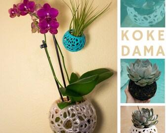 Kokedama, Orchid Pot, String Garden, DIY Kokedama, Moss Ball, Voronoi Hanging Planter, Jellyfish, Moss Planter, Air Plant Holder, Bonsai Pot