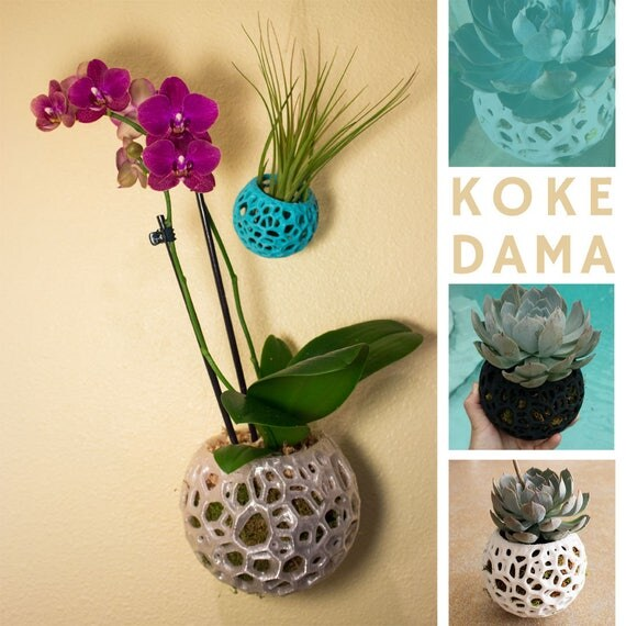 kokedama orchid pot string garden diy kokedama moss ball. Black Bedroom Furniture Sets. Home Design Ideas