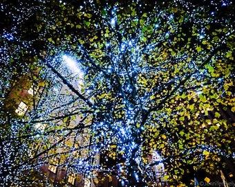 New York Fairy Lights & Architecture 2