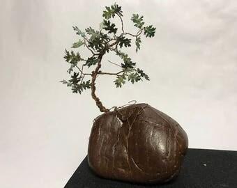 Mini Copper Oak Bonsai