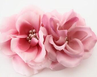 Kentucky Rose