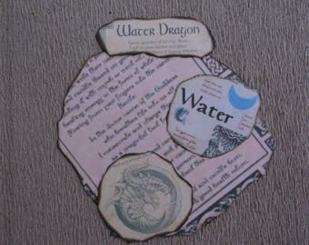 Water Dragon  Journal