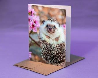 HEDGEHOG NOTE CARD - Hedgehog with Flowers Photo Blank Greeting Card - Blank Hedgehog Note Card - Hedgehog Photo Card