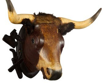 wooden carved bull head from a butchery ca. 1880