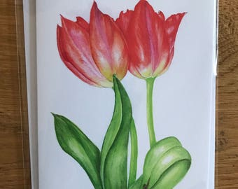 A6 Greeting Card Tulips (Blank inside)