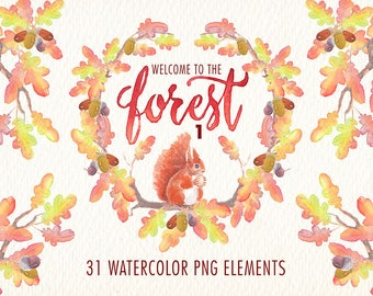 watercolor clipart set. In the forest png elements