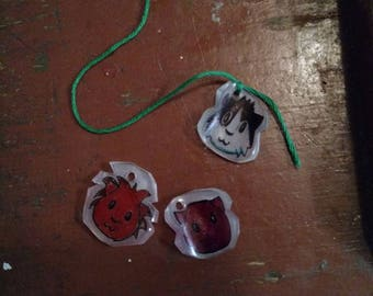 Custom charms (guinea pigs and other pets)