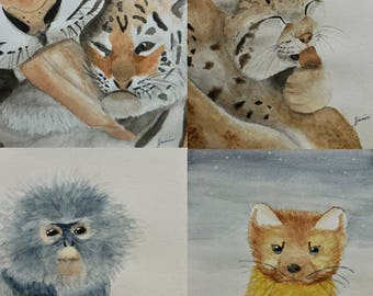 """Assorted Watercolor Notecard Set of 12 - 5.5""""x4"""""""