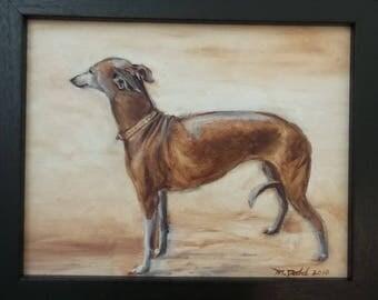 Greyhound - 8 x 10 inch original oil painting of a greyhound by Martha Dodd