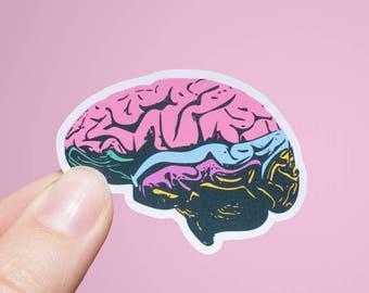 Brain Pop Art | Anatomy Sticker | Matte or Glossy Finish