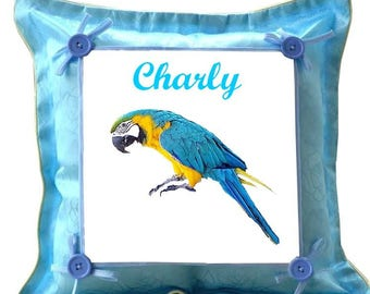 Blue pillow Parrot personalized with name
