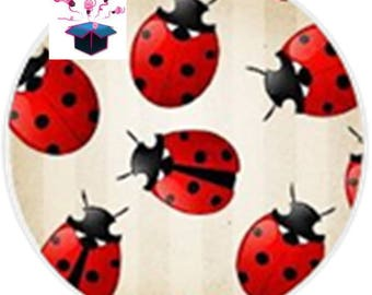 1 cabochon clear 18 mm lady bug theme
