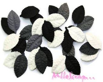 Set of 30 sheets black, grey, white decorative scrapbooking *.