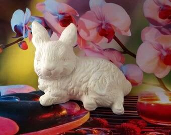 big rabbit lying to decorate