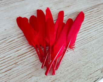 Set of 10 long red feathers