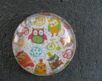 cabochon 25 mm owls theme