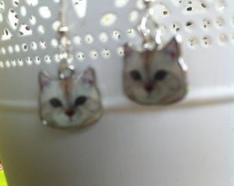 Ivory Cat Head earrings