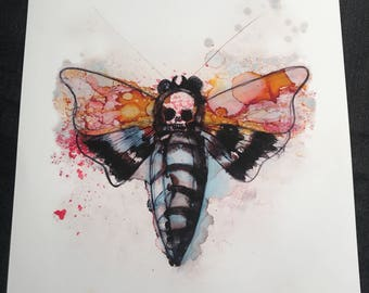 Death moth #3 print
