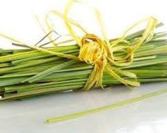 Lemongrass essential oil organic 10 ml