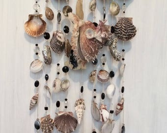 Exotic Seashell windchimes
