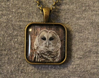 """Barred Owl """"Brewster"""" Pendant Necklace"""