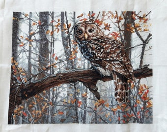 Owl - Completed Cross Stitch