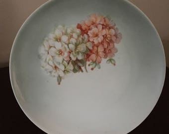 Vintage Z. S & Co Bavaria Luncheon Plate with Hydrangeas, Pink and White Hydrangeas on Lunch Plate, Porcelain Lunch Plate