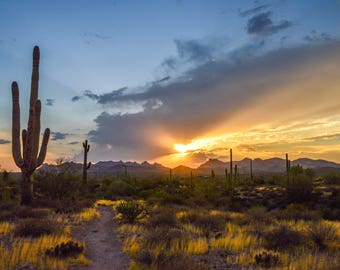 Arizona, Desert , sunset, Landscape Photography, Cactus, Saguaro, Southwest, Landscapes, Digital download, photo