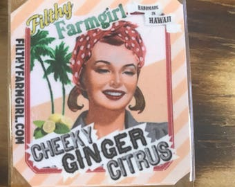 Filthy Farmgirl Cheeky Ginger Citrus 2 oz Soap