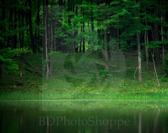 Forest Pond | Landscape Photo Art | Nature Lover Gift | Fine Art Photography | Personalization | BDPhotoShoppe | Home Office Decor