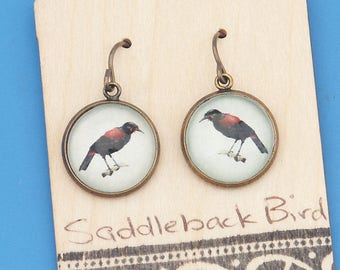New Zealand Saddleback birds, vintage art print, Earrings, glass dome art, niobium hypo-allergenic