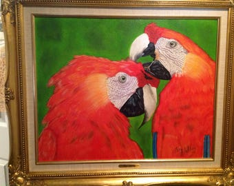 No: 130 the Macaws