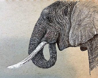 Elephant Pen and Ink Orginal on Toned Paper 5 x 8