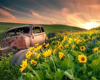 Forgotten Past   Oregon Landscape Photography, Pacific Northwest, Fine Art, Landscape Photography, Wall Decor, Oregon Photography, Sunset