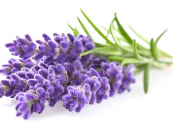 10ml Pure Lavender Essential Oil - 100% Therapeutic Grade (Bulgarian) for Aromatherapy