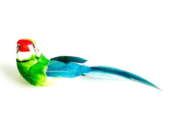 Brooch -- TROPICAL BIRD, green and blue, feathers, metal pin by The Sausage