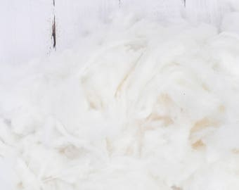 Stunningly White Soft Cormo Wool From Coated Sheep - Washed - Natural Wool - White - Undyed - Fine and Soft - Art Fiber - 4 Ounces