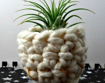 White with Gold at the Bottom Air Plant Pot