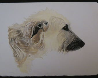 Pet Portraits Hand Painted on Aluminized Crescent Board Made to Order 5 x 7 inch Irish Wolfhound Wheaten by Shannon Ivins