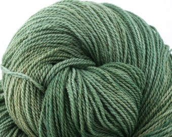 Mohonk Light Hand Dyed fingering weight NYS Wool 550yds 4oz Houseplant