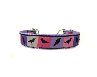 1 Inch Wide Dog Collar with Adjustable Buckle or Martingale in Ravens