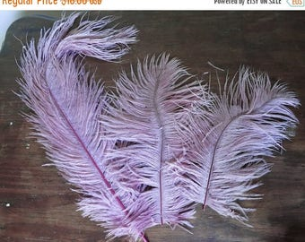 20% Sale - Large Vintage Millinery Hat Feathers, 3 Lavender-Mauve feathers, 8 to 13 inches long, Antique 1900s Plumes