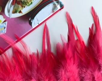 VIVACE  SADDLE, Lipstick Pink , V - 04