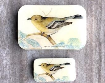 Yellow Bird Pill Box SMALL, Notions Tin