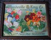 Nasturtiums, Sweet Peas, Print, Paul de Longpre, Mandeville, Seed, Flower, Advertisement, Seeds, Frame, Vintage, E41