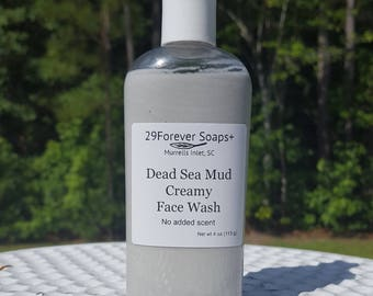 Dead Sea Mud Facial Cleaner - Creamy Face Soap - French Green Clay - Activated Charcoal Soap - Jojoba Oil Soap - Aloe Soap - Honey Soap
