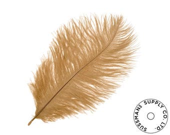 "Ostrich Feathers - Wholesale Wedding Feathers Ostrich Drab Plumes - Brown - 10pcs (14-17"")"
