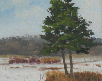 Small oil painting, winter landscape, plein air painting,, pine tree painting