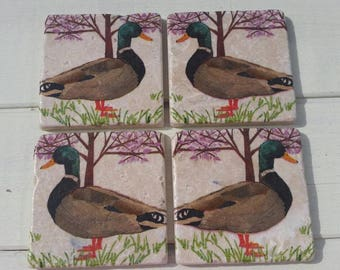 Mallard Male Duck Set of 4 Tea Coffee Beer Coasters
